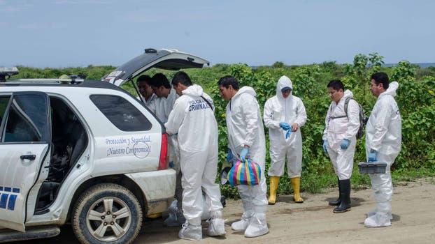 Siete peritos con equipos portátiles trabajaron en una zona de altos pastizales cercana a la playa. Foto: Omar Sotomayor