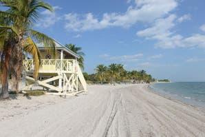 OHLALÁ! Miami llega a los kioscos el 18 de agosto