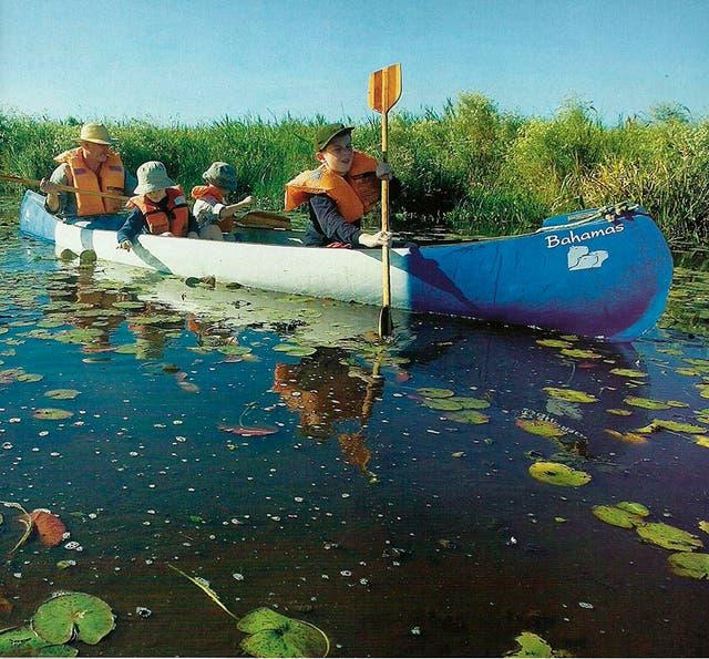 La navegación en la Laguna Iberá es una de las mejores maneras de avistar la fauna de los esteros.