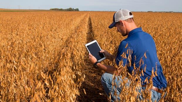 Los productores cosechan datos