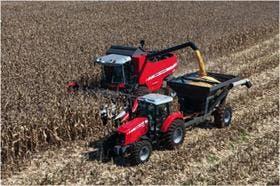 El precio del maíz podría retroceder