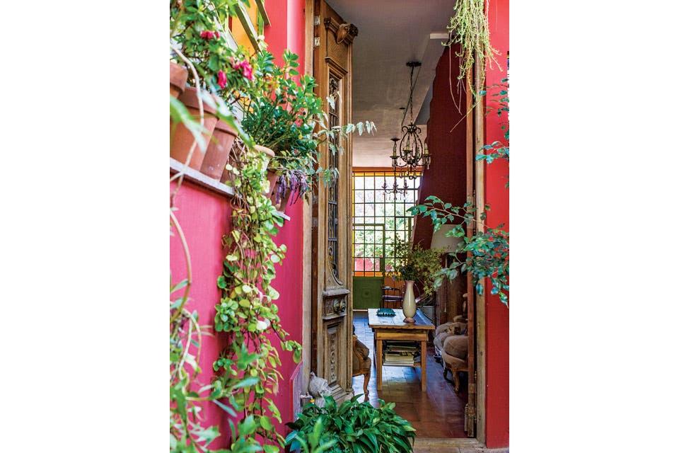 Un garaje que se convirtió en pulmón verde y una puerta de madera tallada (Amighini) .  Foto:Living /Santiago Ciuffo
