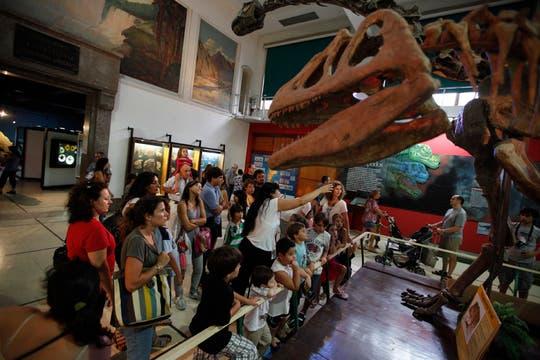 La colección Dinosaurio, pasó por el Museo de Ciencias Naturales. Foto: LA NACION / Hernán Zenteno