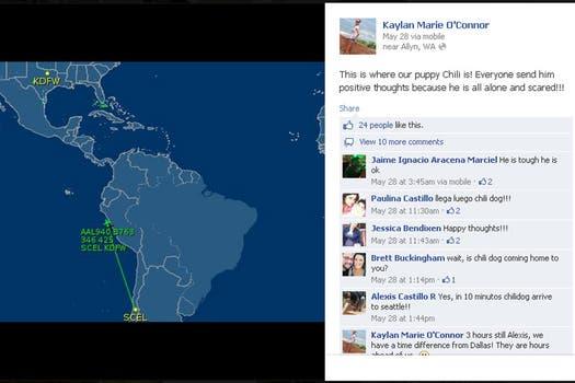 La nueva dueña de Chili Dog siguió ansiosa el vuelo del perro por Internet. Foto: facebook.com/kaylan.oconnor/