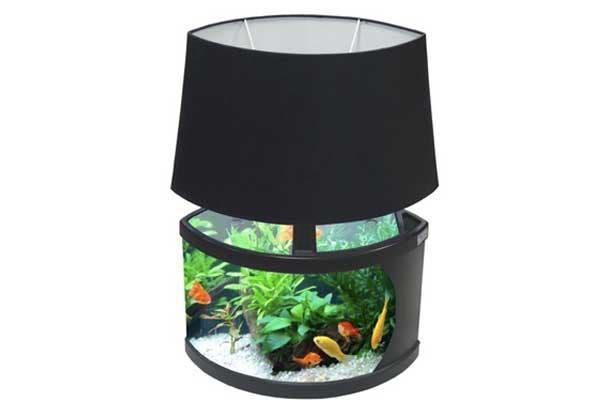 Una pecera con luz propia ¡para darles más calor a tus pececitos!. Foto: Smosh.com