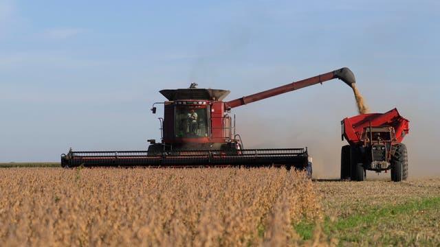 La agricultura y las tareas vinculadas serían impulsoras del empleo en 2017