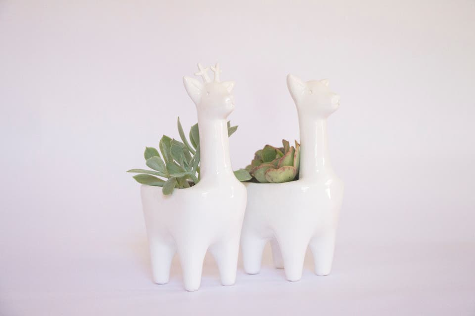 Macetas de llamitas, Verde Cactus, $530. Foto: OHLALÁ!