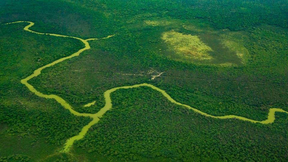 Serán miles de hectáreas protegidas de la caza y los desmontes. Foto: LA NACION / Diego Lima / Enviado especial