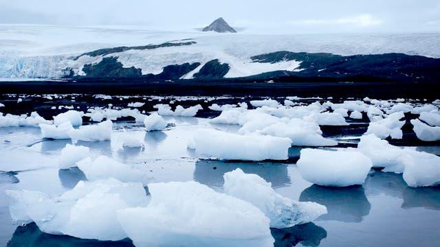 Vista de la costa de la Caleta Poter, con el Glaciar Furcade de fondo, hacia la base Carlini, en la Antartida. Foto: LA NACION / Fernando Gutierrez