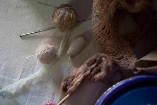 Las diferentes etapas por las que pasa el capullo hasta convertirse en un finísimo hilo de seda. Foto: LA NACION / Rodrigo Néspolo/Enviado especial