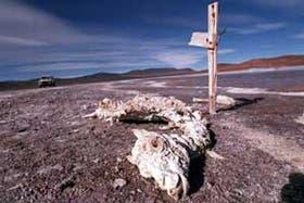 Laguna Brava, en la provincia de La Rioja, una de las tantas zonas en las que se evidencia el deterioro de los recursos naturales del país