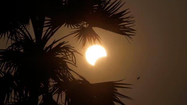 Un astrónomo viajó hasta Célebes para retransmitir en directo el eclipse. Foto: AP