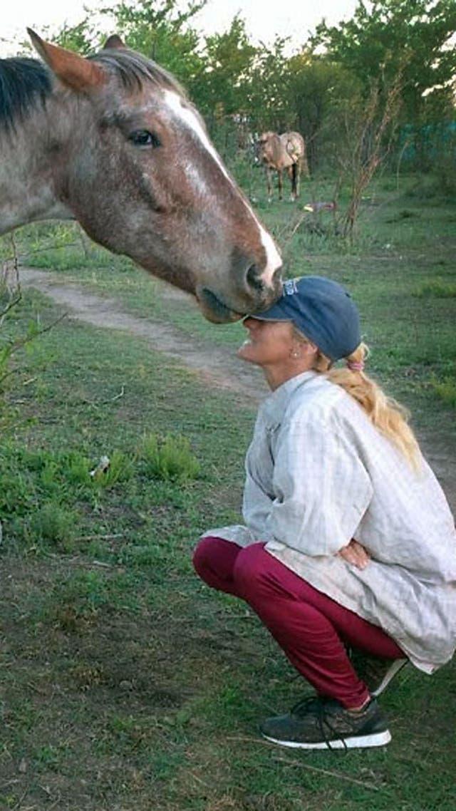Cherubicha, un refugio de caballos sostenido por la pasión de una familia