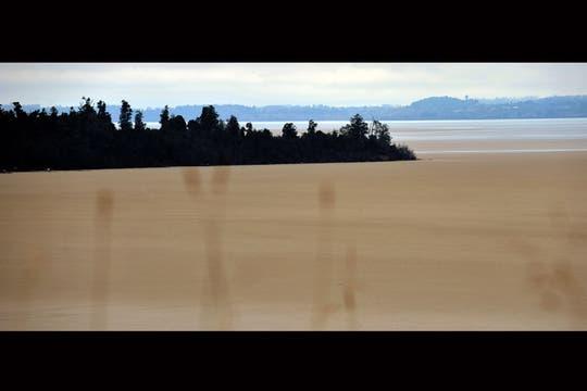 Vista del lago Puyehue cubierto de cenizas del volcán del mismo nombre, cerca de Osorno. Foto: AFP
