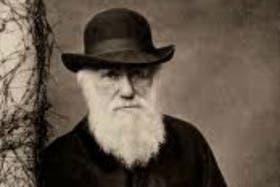 Las cartas de Darwin salen a la luz luego de una investigación de la BBC