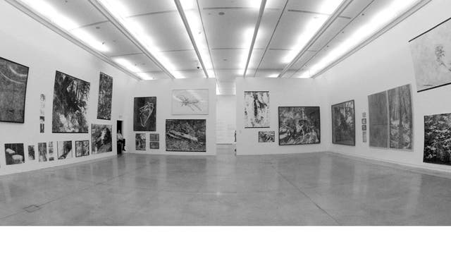 Dibujos de Ana Gallardo en el Museo de Arte Moderno de Buenos Aires