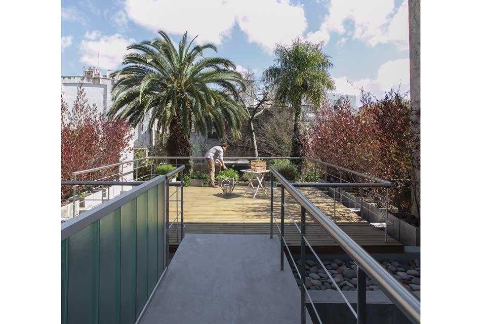 Vista desde el fondo del jardín hacia la galería y la terraza. A los laterales, una cortina de dodoneas plantadas en cubos de fibrocemento que filtra las miradas desde las casas vecinas.