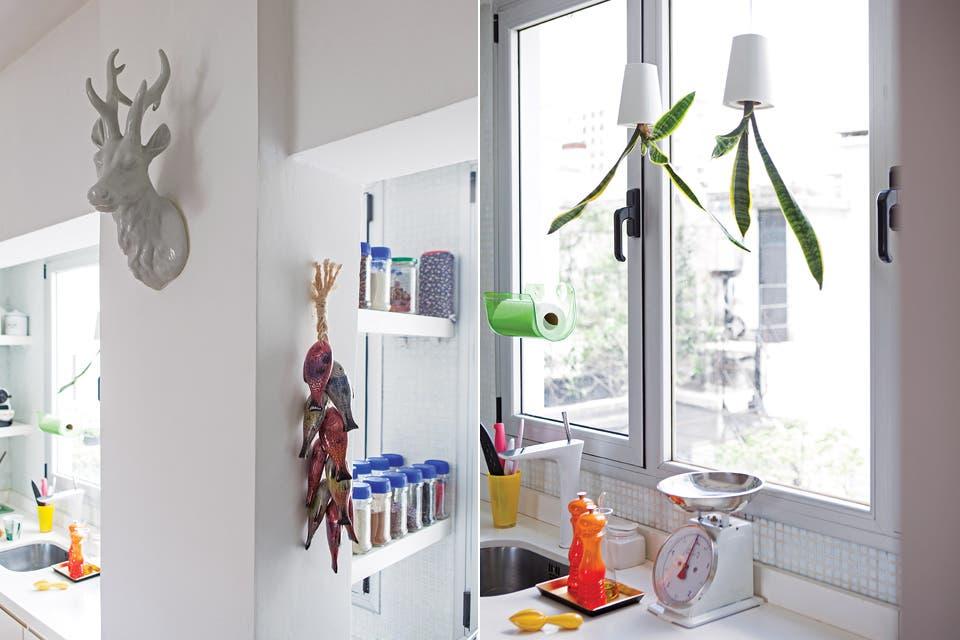 Originalmente, el departamento tenía una pequeña kitchenette en el pasillo de entrada, espacio que se convirtió en el actual lavadero. En el detalle, plantas colgantes (Boskke).  Foto:Living /Javier Picerno