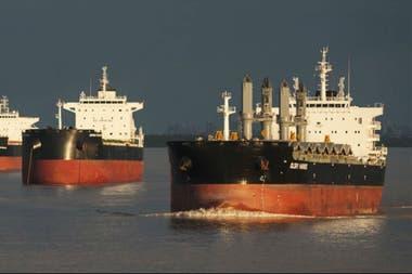 Advierten que una eventual reducción del arancel externo común generaría una caída del valor del trigo en los puertos argentinos