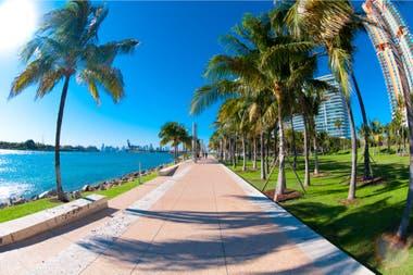 En Miami el consejo es bastante claro: menos shopping y más naturaleza