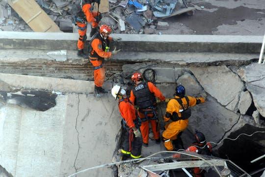 En el tercer día de búsqueda, bomberos y rescatistas, junto a perros especialmente entrenados, buscan vida entre los escombros. Foto: EFE