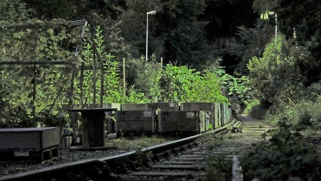 Jardines y canteros en una vía abandonada en Estocolmo