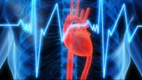 La insuficiencia cardíaca es un severo problema cardiovascular
