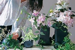 Qué plantas eligir para tu primer departamento