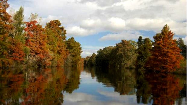 Vista de uno de los canales del Delta del Paraná