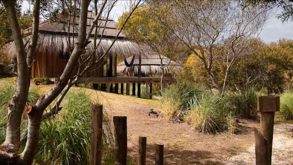 Chau a los hoteles clásicos: la alternativa es alojarse en contacto con la naturaleza