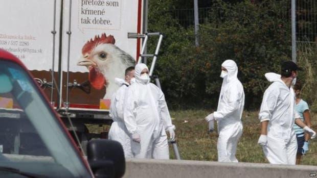 Los inmigrantes fueron encontrados por la policía tras haber sido abandonado el camión