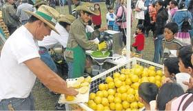 La mayor parte del pomelo se procesa para jugo