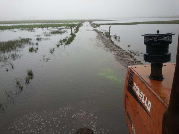 La zona de 30 de Agosto, en Trenque Lauquen, más complicada por las últimas lluvias