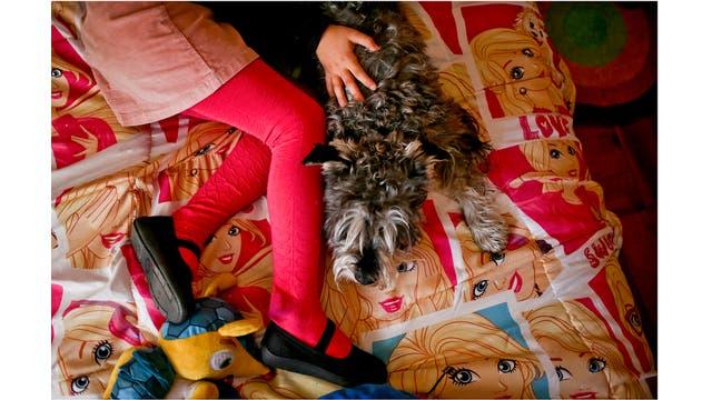 Luna juega con su perro Stark en su colcha con tema de Barbie en su casa en Santiago, Chile