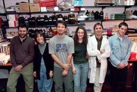 El grupo del doctor Alberto Kornblihtt en Ciencias Exactas, de la UBA