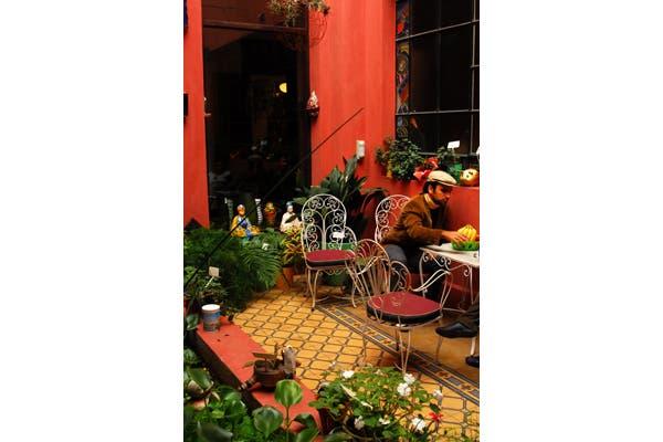 Podés decorar tus espacios interiores con plantas al estilo de un patio. Foto: Gentileza Ernestina Anchorena
