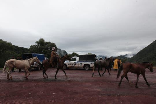 Los rescatistas encontraron muerto al médico platense en la selva del Parque Calilegua. Foto: LA NACION / Santiago Hafford