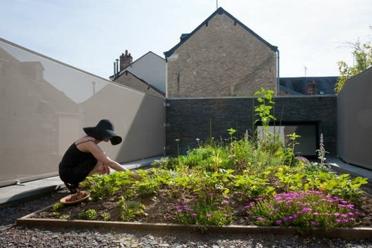 Huerta en la terraza de la casa de Francia, con tierra reutilizada de las excavaciones.
