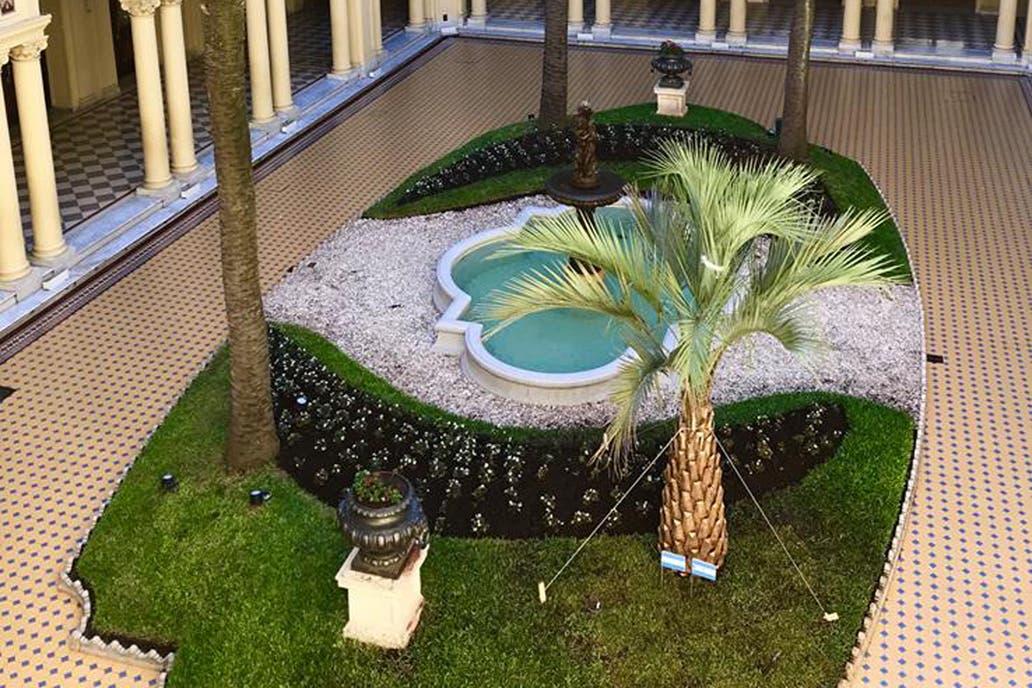 La Casa Rosada ya tiene su nueva palmera