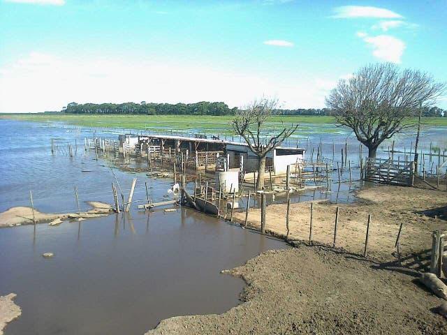 Gran parte de las instalaciones del instituto está bajo el agua