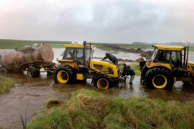 El trabajo en el campo se convirtió en una hazaña, el80 por ciento de General Viamonte está bajo el agua;. Foto: Santiago Hafford