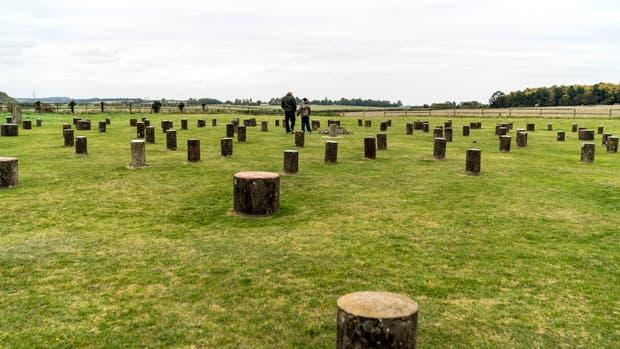 Las columnas de hormigón marcan el lugar que ocupaban los postes de madera que conformaban Woodhenge, otra construcción megalítica de propósito desconocido (Andrew Testa/NYT)