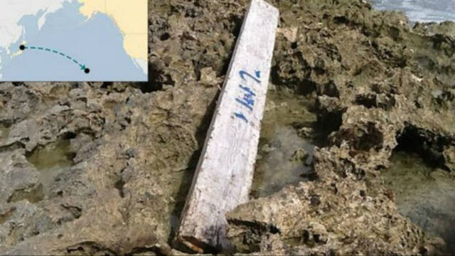 El letrero de madera fue hallado a 6.000 kilómetros de distancia de su lugar de origen