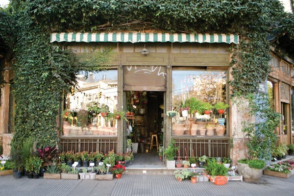 Arriba la primavera viveros cool revista ohlal for Vivero casa jardin