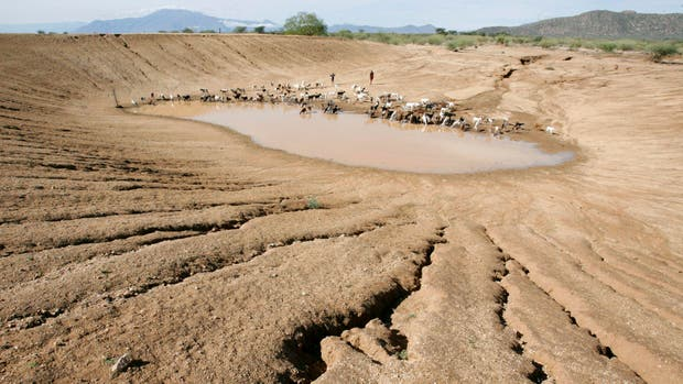 El 2016 el año más cálido provoca sequías en varios lugarers del planeta