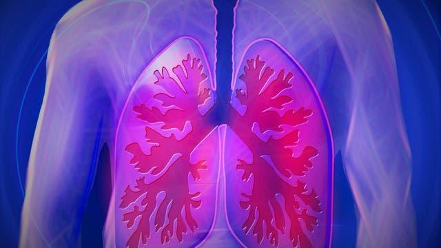 Un pequeño grupo de neuronas controla qué tipo de respiración necesitamos, un mecanismo que nos mantiene vivos.