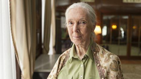 """Jane Goodall: """"Falta entender que los animales tienen personalidad y sentimientos"""""""