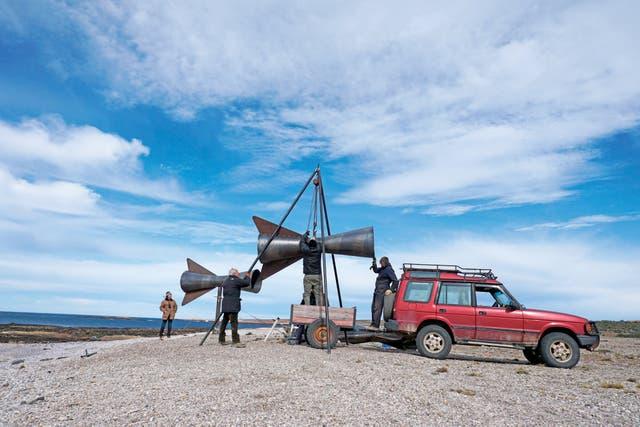 Después de una larga travesía, las trompetas aún dormidas tocan suelo patagónico, a metros del esqueleto de una ballena minke que fue bocado de petreles