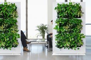 6 Iniciativas para una ciudad sustentable