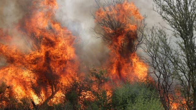 Llegan a casi 300.000 las hectáreas afectadas; un tercio del Parque Nacional Lihué Calel está quemado